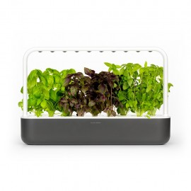Click and Grow Smart Garden 9 Starter kit